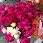 Peonies from Janna's Flowers